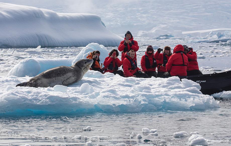 Zodiac Excursion in Antarctica getting close to a seal