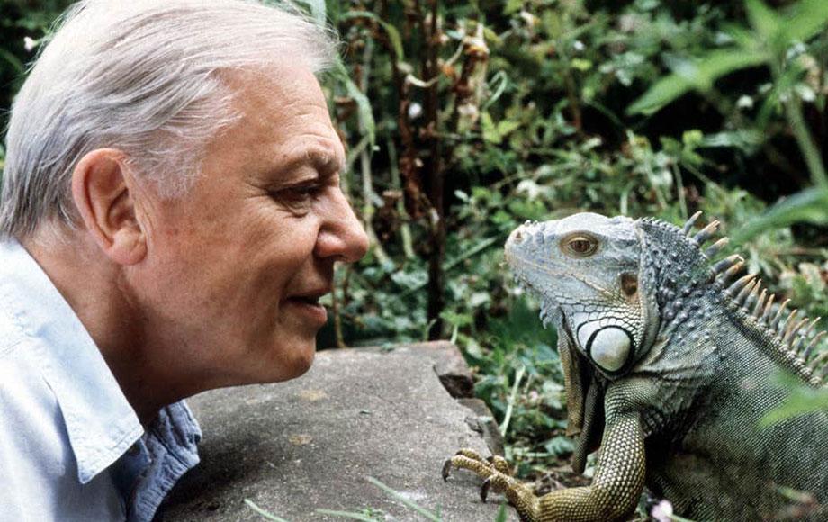 David Attenborough on the Galapagos Islands