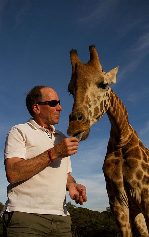 Steve Feeding Giraffe at Giraffe Manor
