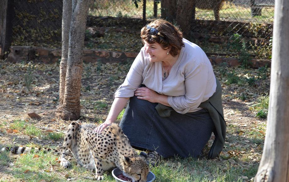 Annie with a cheetah at the African Vet Safari Group