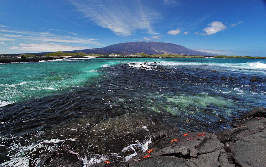 Fernandina Island in the Galapagos