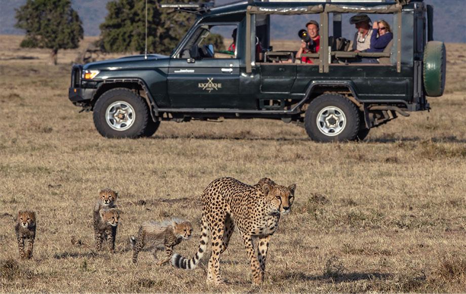 Kicheche Laikipia Safari