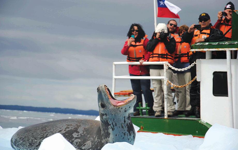 Patagonia Cruising