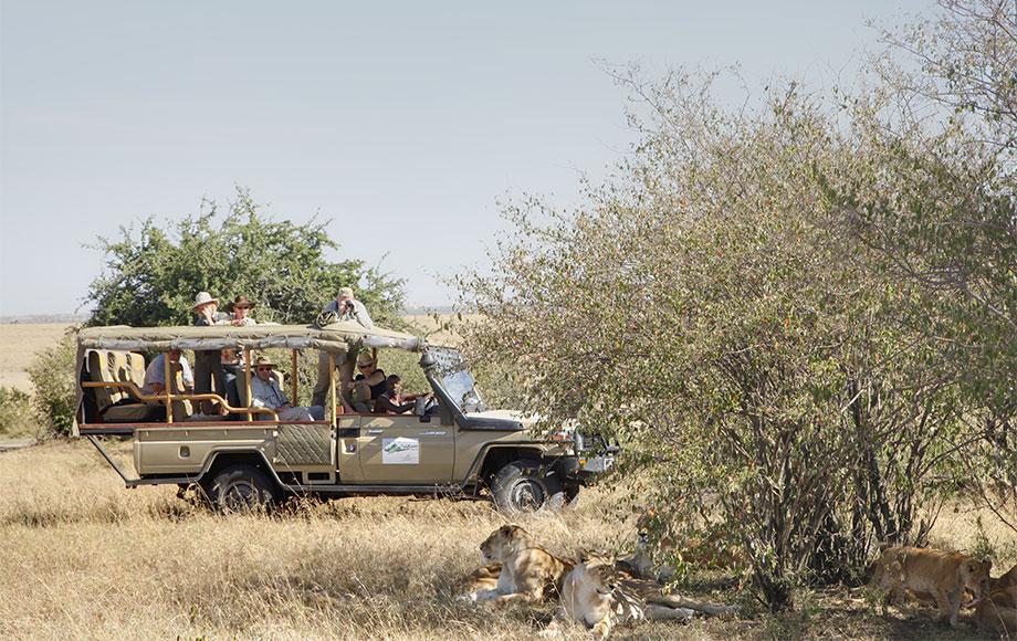 Kenya Safari at Tipilikwani Camp
