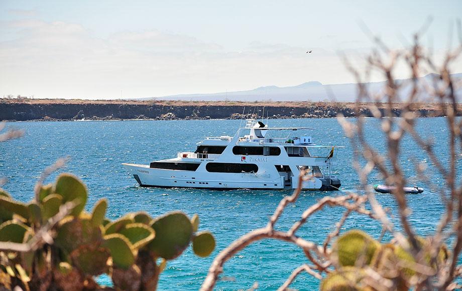 Pikaia Lodge Private Yacht