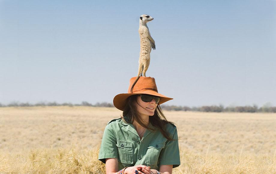 Meerkat standing on guest's head