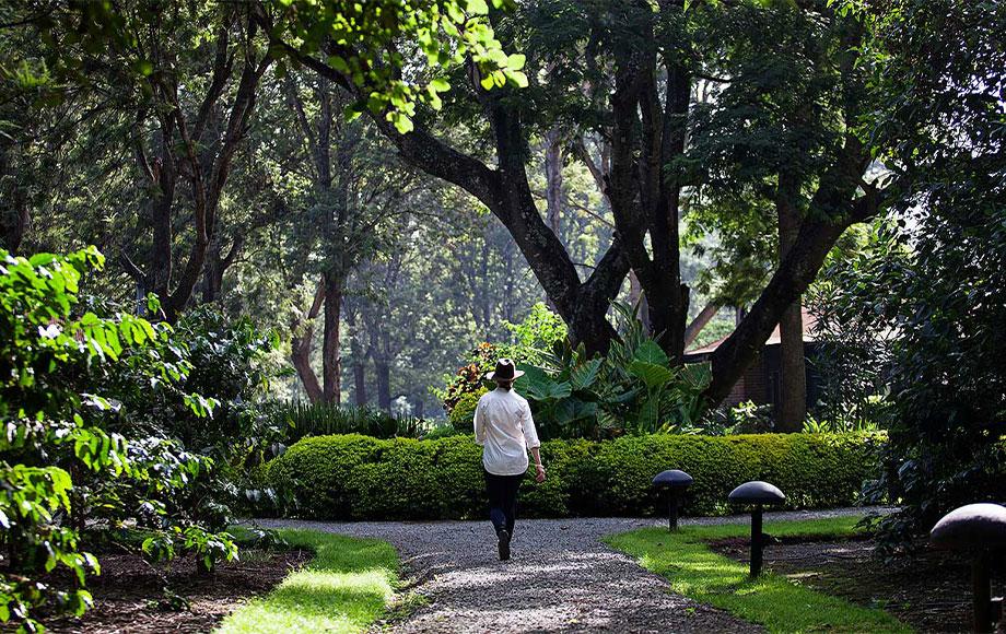 Arusha Coffee Lodge Gardens