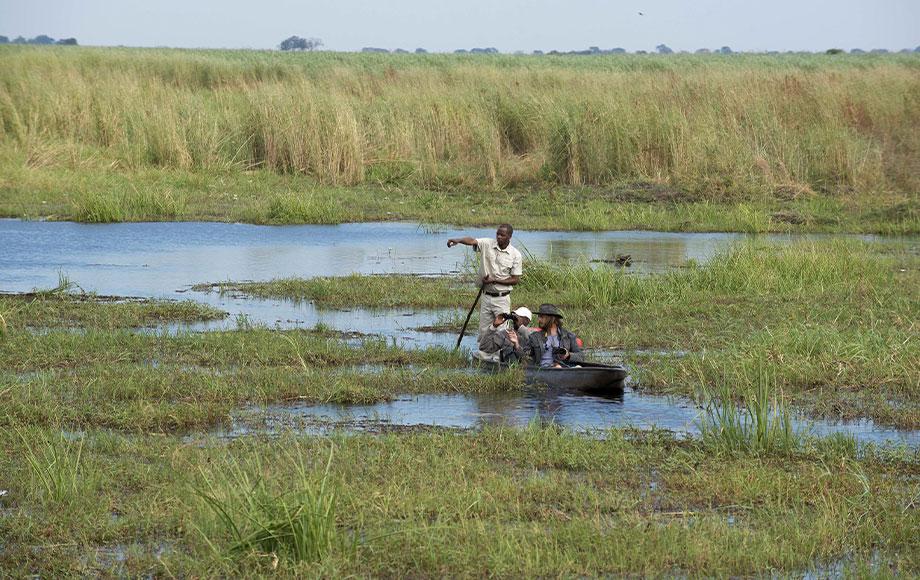 Mokoroing at Linyanti Expeditions