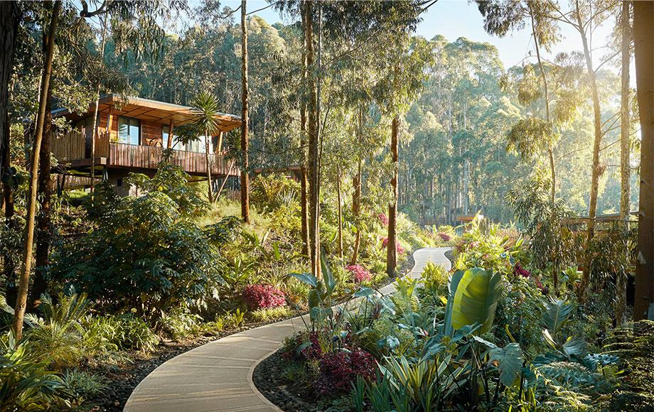 One & Only Gorilla Nest Villa