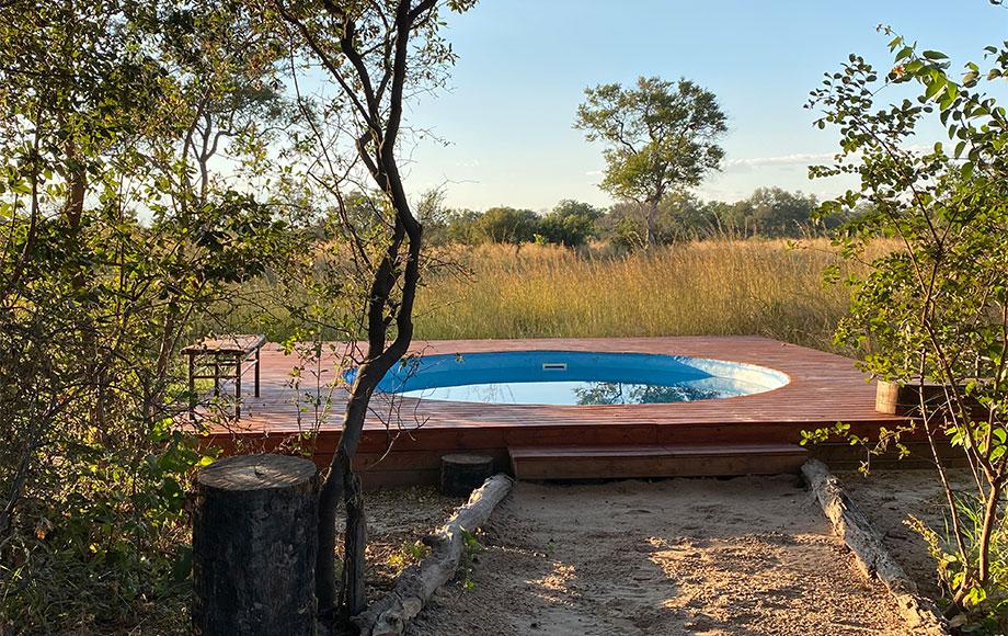 Selinda Explorers Camp Pool