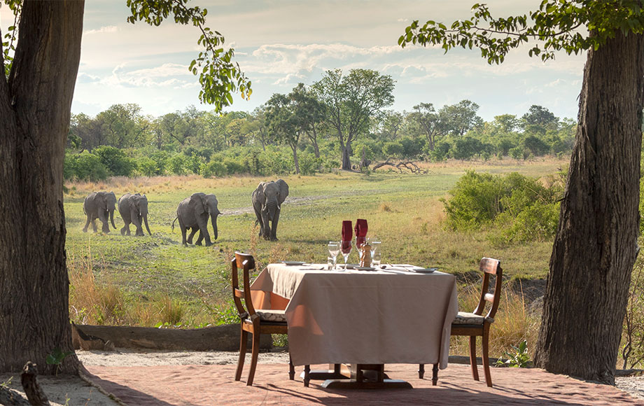 Morning breakfast with a view of elephants