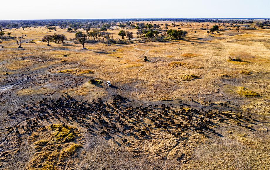 Open plains around Tuludi