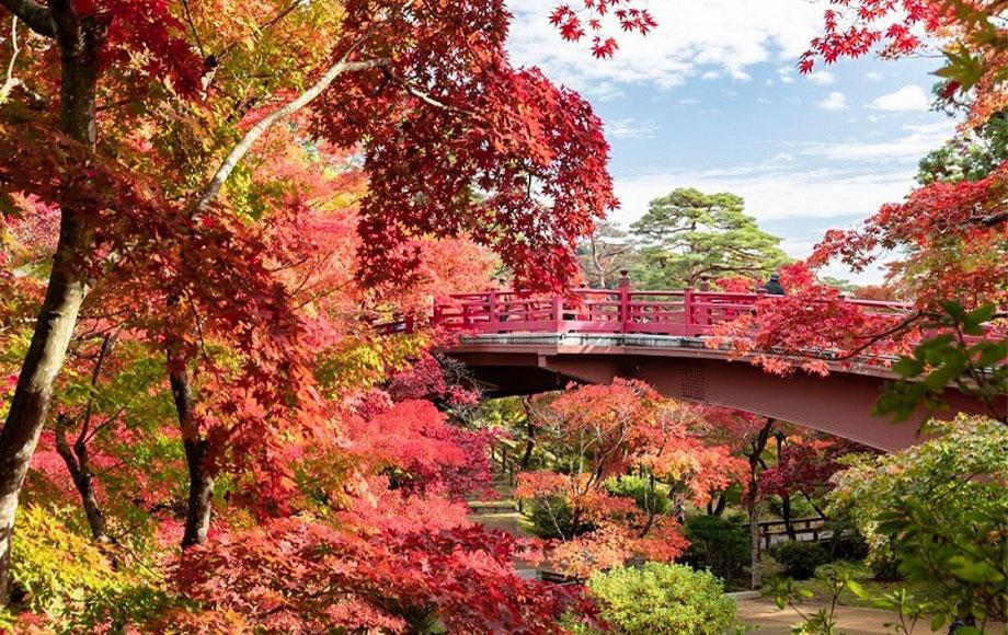 Niigata Yahiko Park
