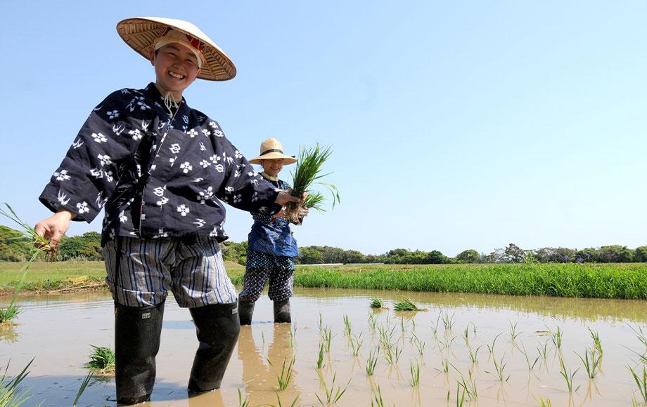 Farmers on Hokkaido