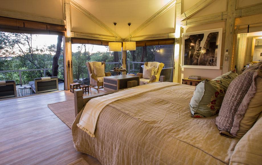 Abu Camp Suite