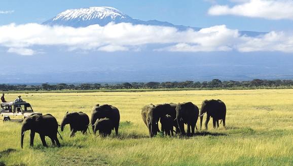 Amboseli, Chyulu Hills & Tsavo West