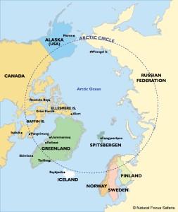 Arctic map - Natural Focus Safaris