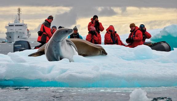 Falklands, South Georgia & The Antarctic Peninsula