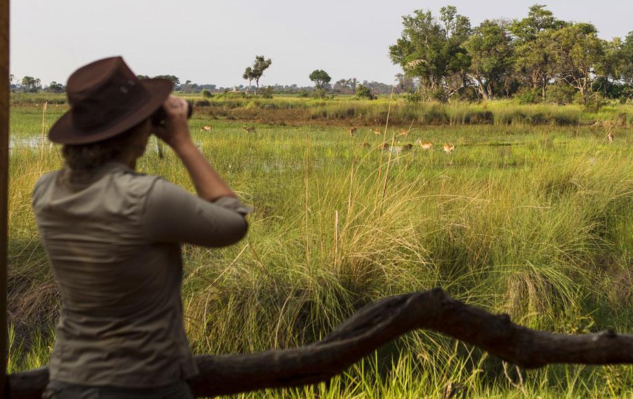 On Safari at Kanana Camp