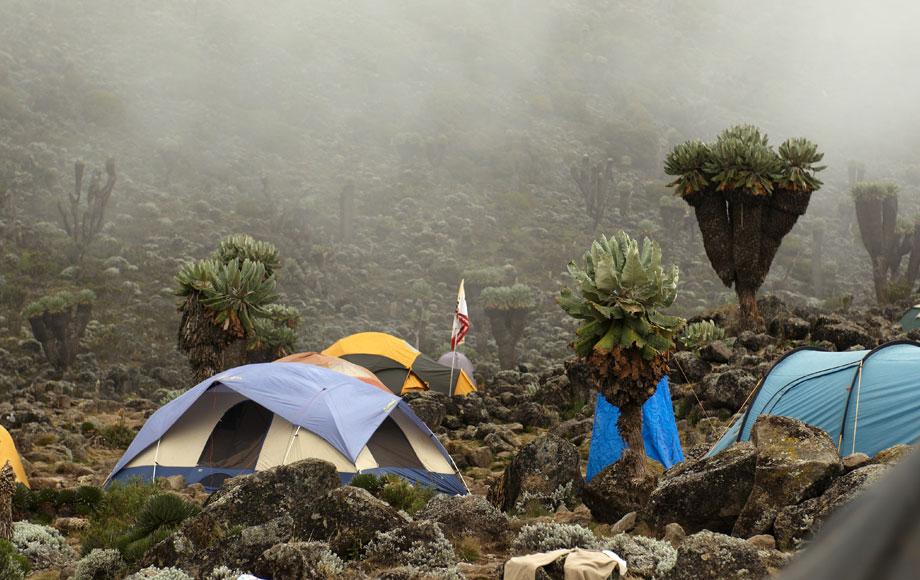 Mount Kilimanjaro camp ground