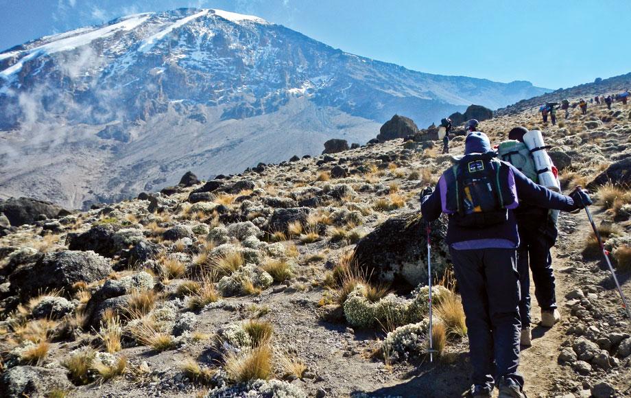 Trekking up to Mount Kilimanjaro