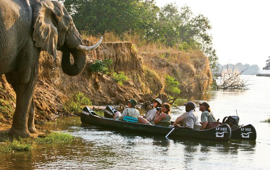 Mocoro excursion at Mana Pools in Zimbabwe