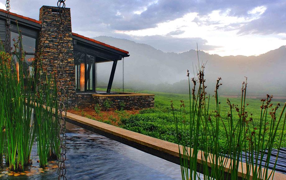 Nyungwe Forest Lodge in Rwanda