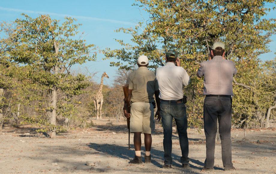 Ongava Tented Camp walking safari