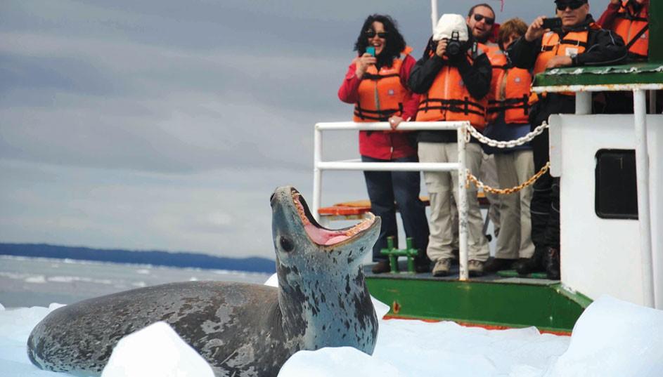 Patagonia Skorpios III Cruise