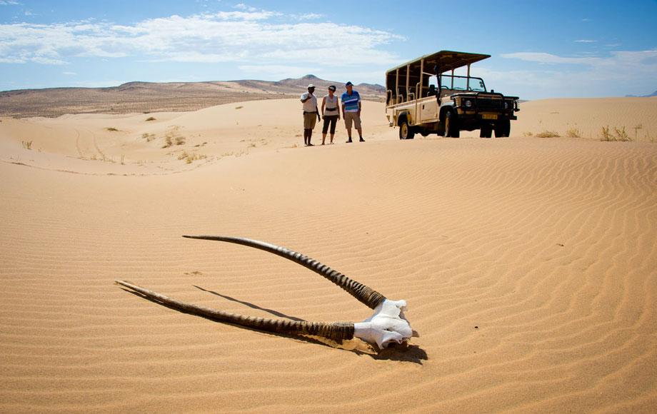 Nambia Desert Dunes