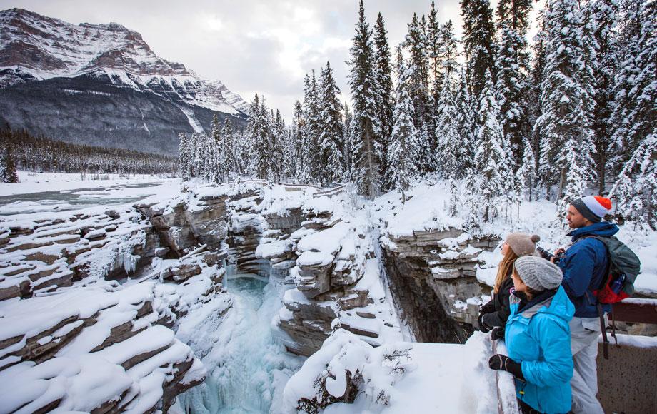 Winter Wonderland in Canada's Rocky Mountains