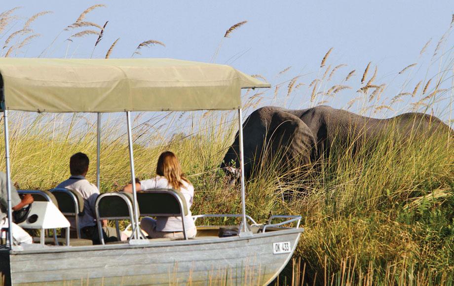 Boat excursion in the Okavango Delta